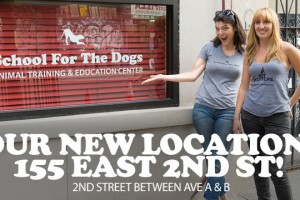 Our New Location: 155 East 2nd Street between Ave A & B