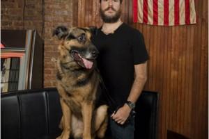 new york times dog taft