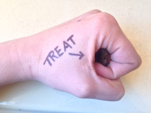 treat held inside hand