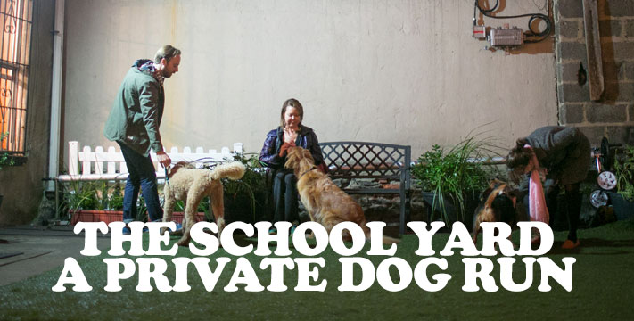 The School Yard: New York's first trainer-supervised private Dog Run