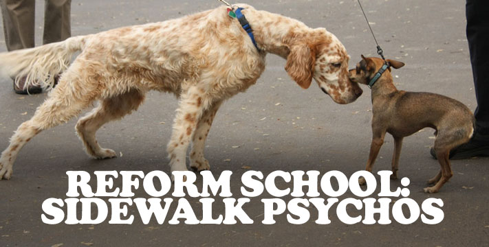 Reform School: Sidewalk Psychos Leash Aggression