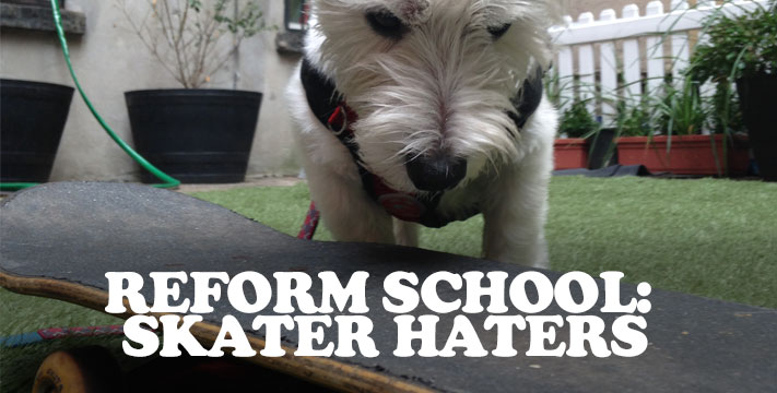 Reform School: Skater Haters Leash Aggression