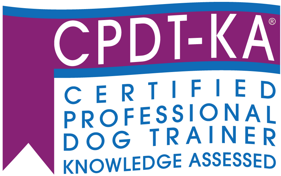 Dog Trainer Certifications What Do All The Letters Mean School