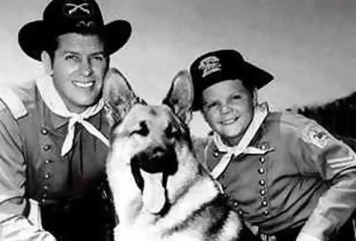 Rin Tin Tin and the fate of the 20th century dog actor | School For The Dogs